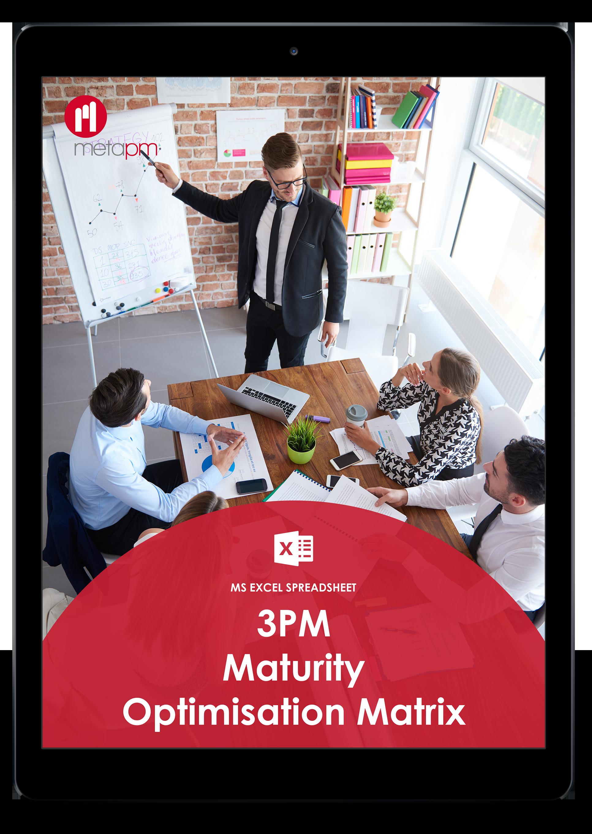 3PM Maturity Matrix Pic